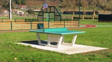 Table de ping pong NF PMR